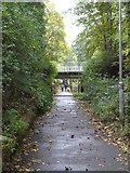 NS5574 : West Highland Way near Milngavie by Dave Kelly