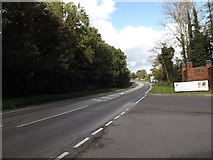 TG2202 : A140 Ipswich Road, Dunston by Adrian Cable
