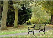 J3171 : Seat, Musgrave Park, Belfast (October 2014) by Albert Bridge