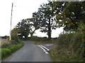TM3191 : Pound Lane, Ditchingham by Adrian Cable