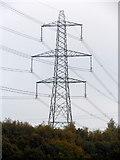 SE1223 : Pylon in Cromwell Wood by Michael Steele