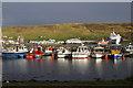 HU3939 : Scalloway Marina by Mike Pennington