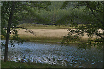 NH3033 : Loch Craskie by Nigel Brown