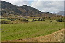 NH2637 : Fields by the River Farrar by Nigel Brown