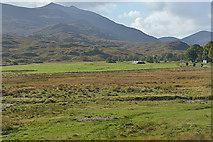 NH2338 : Fields by Braulen Lodge by Nigel Brown