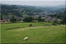 SE1407 : Sheep above Holmfirth by Bill Boaden
