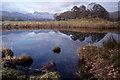 NY3303 : River Brathay by Ian Taylor