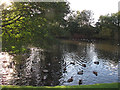 SE0742 : Pond, East Riddlesden Hall by Stephen Craven