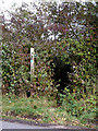TM1960 : Footpath off the B1077 Chapel Hill by Adrian Cable