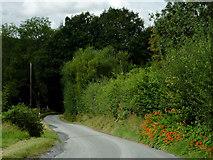 SN7564 : Lane to Strata Florida, Ceredigion by Roger  Kidd