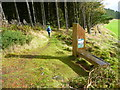 NT2840 : Footpath in the Glentress Forest by Gordon Brown