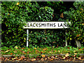 TM0961 : Blacksmiths Lane sign by Adrian Cable