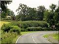 SK9828 : B1176 Approaching Bitchfield by David Dixon
