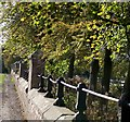 NT9350 : Boundary wall by David Chatterton