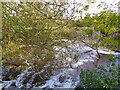 SO4710 : Pool  in the River Trothy by the weir, Wonastow by Ruth Sharville