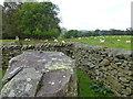 SD6379 : Sheepfold on Fell Foot Road by Raymond Knapman