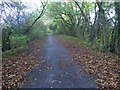 SE4247 : NCN route 665 The Wetherby Railway Path is on an embankment by Steve  Fareham