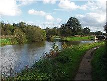 SU9947 : River Wey Navigation towpath by Alan Hunt