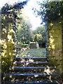 SJ9493 : Autumn Shadows at Pole Bank by Gerald England