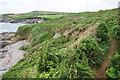 SW5528 : Coastal path above Porth Sampson by Bill Boaden