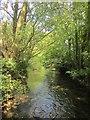SU0931 : River channel, Wilton by Derek Harper