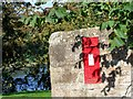 NT9351 : Post box by David Chatterton
