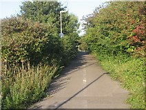SU6252 : Overgrown cycle path by Given Up