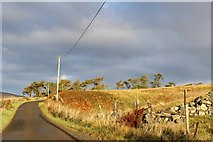 NS3262 : Minor road near Heathfield by Leslie Barrie