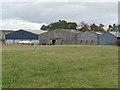 NT5825 : Barns and black sheep at Pinnacle Farm by Oliver Dixon