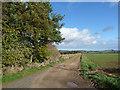 NT6024 : Farm road leading to Hopton Farm by Oliver Dixon