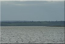 TQ8485 : View of the Hoo Peninsula, Kent from Leigh-on-Sea #3 by Robert Lamb