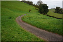 SX8158 : Part of Sharpham Drive by jeff collins