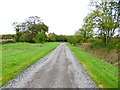 SU6307 : Looking north on Drove Road to the B2177 by Shazz
