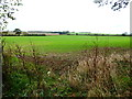 SU6307 : Field corner with footpath exit by Shazz