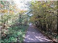 SO6113 : Severn and Wye and Severn Bridge Railway by Richard Webb