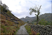 NY3006 : The Cumbria Way in Great Langdale by Tim Heaton