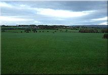 SD5211 : Farmland, Wrightington by JThomas