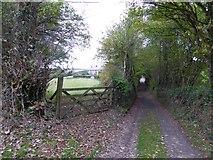 SS6907 : Road to Hawkridge from Coldridge by David Smith