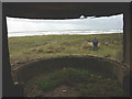 SD2261 : Looking out of the searchlight emplacement, South Walney by Karl and Ali