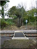 SS7207 : Pedestrian crossing over the Tarka Line at Lapford by David Smith