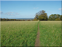 TQ1352 : Path across the field by Alan Hunt