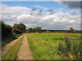 TF8113 : Farm road south of Castle Acre by Trevor Littlewood