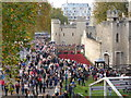 TQ3380 : Poppies in the Moat, Tower of London by PAUL FARMER
