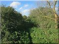 TL3964 : Bridleway to Longstanton by Hugh Venables