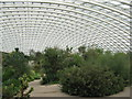 SN5218 : Inside the Great Glasshouse by M J Richardson
