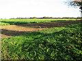 TF8323 : Crop fields by Kipton Farm by Evelyn Simak