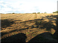 TF8323 : Stubble field by Kipton Farm by Evelyn Simak