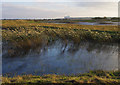 TM4767 : View from the North Hide, Minsmere by Ian Taylor