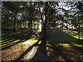 NZ3955 : Autumn light, Backhouse Park, Sunderland by Malc McDonald
