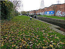 SK5702 : St Mary's Mill Lock along the Grand Union Canal by Mat Fascione